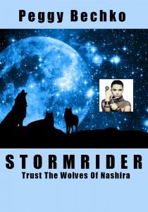 Stormrider Cover- - blue